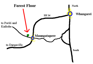 map of forest floor